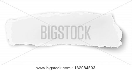 Vector oblong ragged paper scrap isolated on white background