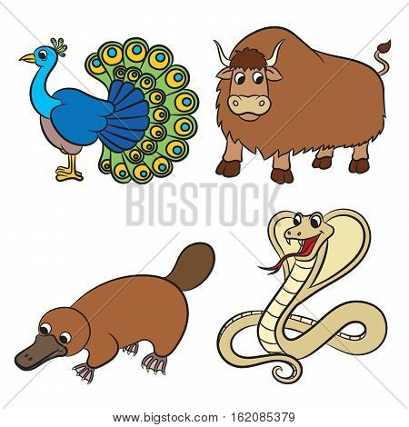 Cute animals collection. Vector illustration on white background