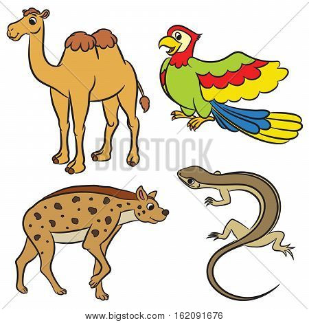 Cute cartoon animals collection. Vector illustration on white background