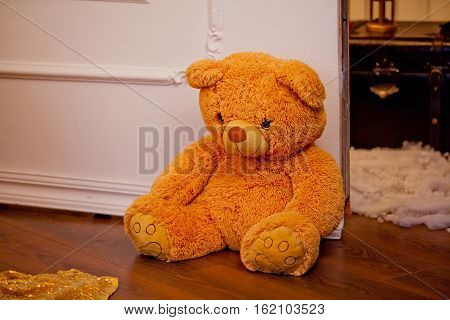 Teddy Bear toy alone on wooden floor close up