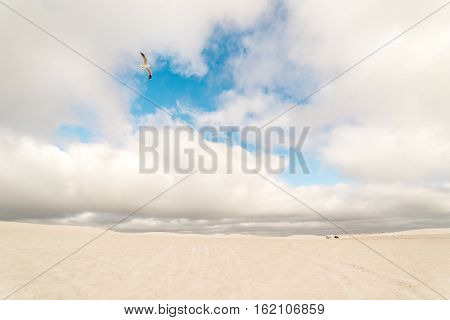 View of Lancelin Sand Dunes in Western Australia. This place for Surfing in Sand. Famous of Families enjoying. Landscape View .
