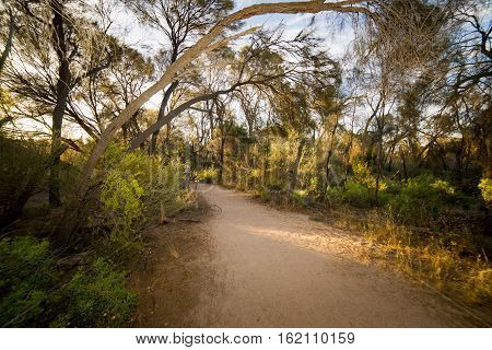 Path through Wave Rock Hyden Western Australia sunset scene .