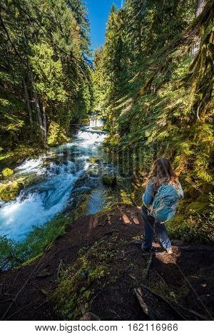 Tourist Backpacker Looking At Mckenzie River Down From Sahalie Falls Oregon