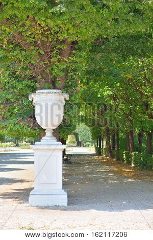Marble pot and tree lined footpath Schonbrunn garden in Wien Austria