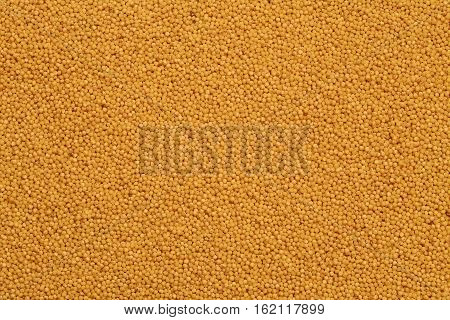 food background of dried yellow millet groats