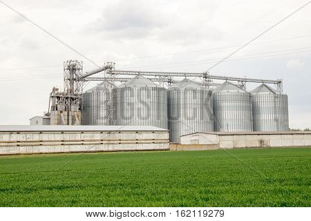 in the field of agricultural enterprise with capacity for grain