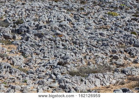 Landscape In Portugal With Rock Stones
