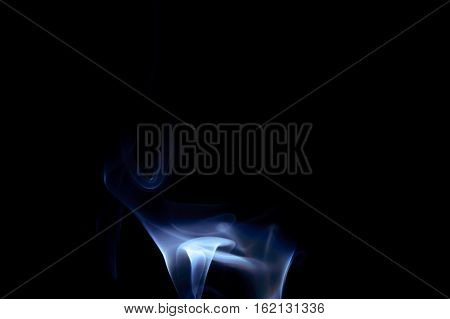 Blue abstract smoke art creature on a black background