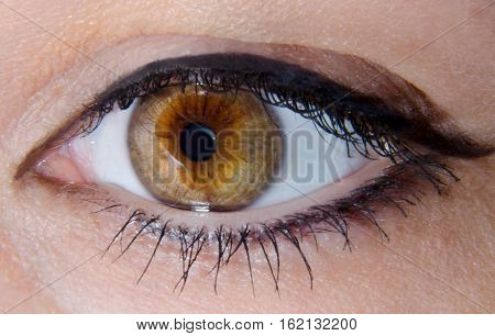 Woman's amber eye with black eyeliner and mascara