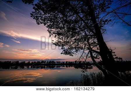 Beautiful sunset seen through tree silhouette on the lake