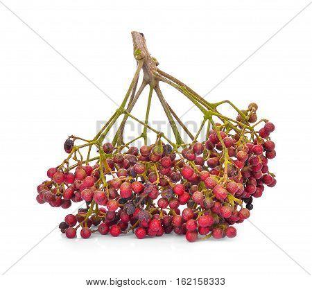Szechuan pepper (Zanthoxylum piperitum) fruits isolated on white background
