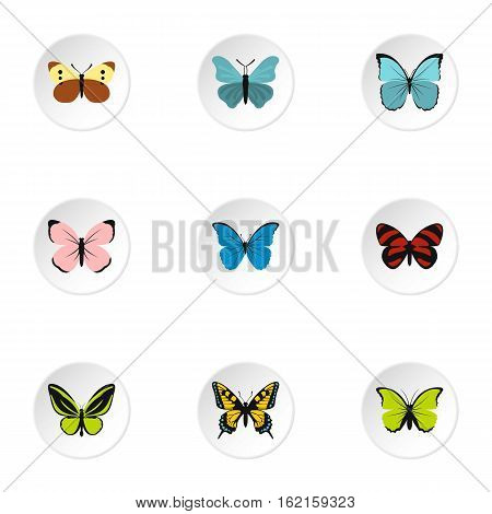 Butterfly icons set. Flat illustration of 9 butterfly vector icons for web