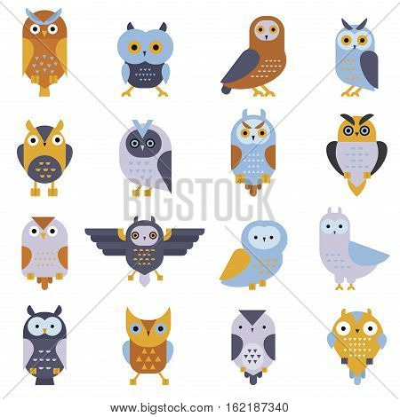 Cute vector collection of cartoon owls. Animal character cartoon owl comic funny collection. Cheerful birds behavior cartoon owl