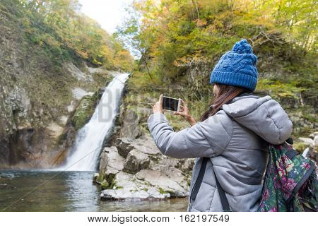 Woman taking photo by cellphone in forest
