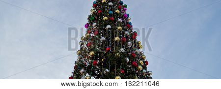 Christmas fir tree, fir tree, Merry Christmas and Happy New Year. Winter holidays. Yule tree.