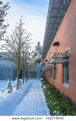 Snowed pathway along the brick wall of office building. Winter trees and small hedge along the wall of the office building
