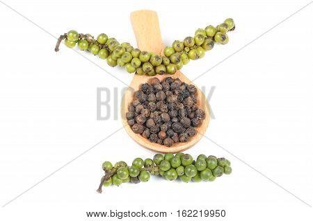 Black peppercorn raw green dry black small round spice