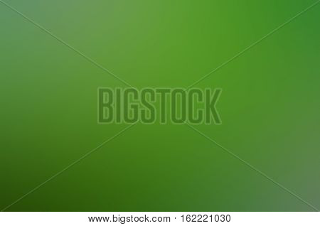 Green White Black Abstract Background Blur Gradient