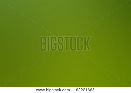 Green Abstract Background Blur Gradient Design Graphic