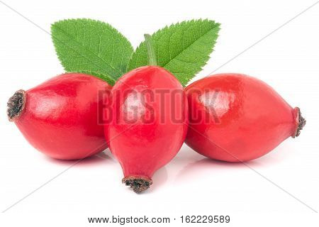 three rose hip berry with leaves isolated on white background.