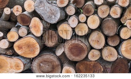 Stacked of old  cut logs for background