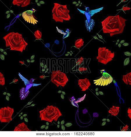 Exotic Colibri Birds With Rose Flowers Colorful On Black Background Vector Illustration