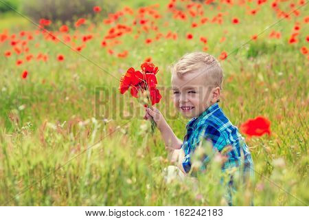 Happy little boy with a bouquet of poppies