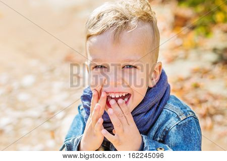 Happy portrait of the little boy in the autumn