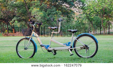 Tandem bicycle in the park Tandem is abstract of harmony and relationship