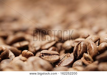 Freshly roasted coffee beans in a coffee roasting house