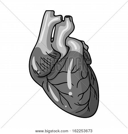 Human heart icon in monochrome style isolated on white background. Human organs symbol vector illustration.