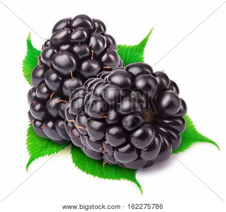 Group of two ripe blackberries with green leaves isolated on white background with clipping path