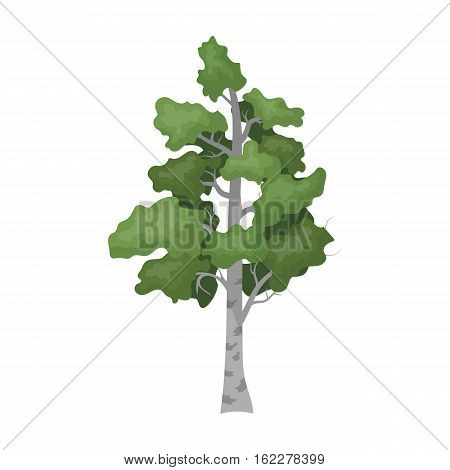 Birch tree icon in cartoon design isolated on white background. Russian country symbol stock vector illustration.