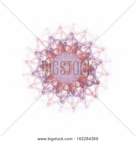 Muted bright red purple bloom on white background