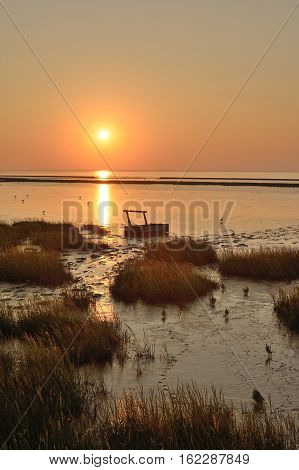 Evening at german wadden Sea in East Frisia with traditional Mud Sled,North Sea,Lower Saxony,Germany