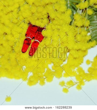 Medical ampules with vitamins on background of mimosa,with space for writing