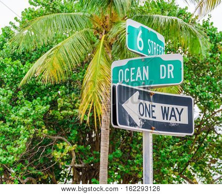 Ocean Drive Street Sign And A Palm Tree