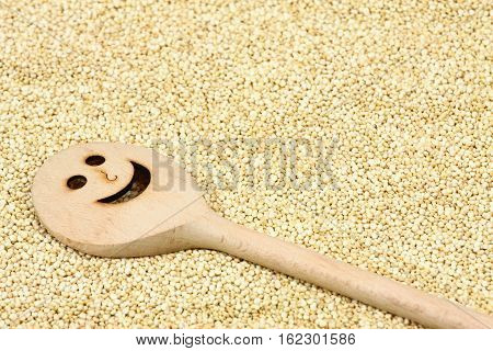 Organic white quinoa seed lat. Chenopodium quinoa. White quinoa seeds and funny cooking spoon.
