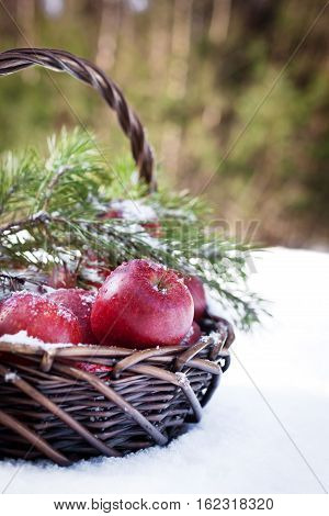 Red Apples In Basket In Snow, Outside