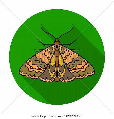 Moth icon in flat design isolated on white background. Insects symbol stock vector illustration.