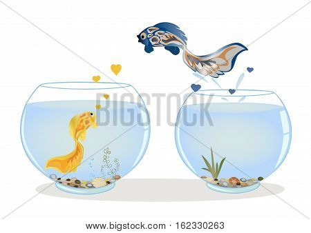 Fish in love jumping to other aquarium to his beloved. Romantic feeling concept. Greeting card with Valentine s day, the recognition in infatuation. Vector illustration. Horizontal location.