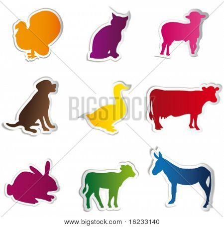 Animals on colorful stickers