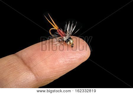 Tiny Fishing Fly on Finger Tip Isolated on Black