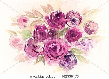 Abstract watercolor peonies (hand drawn)