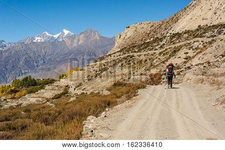 Lonely trekker walking on a road. Annapurna circuit trek in Nepal.
