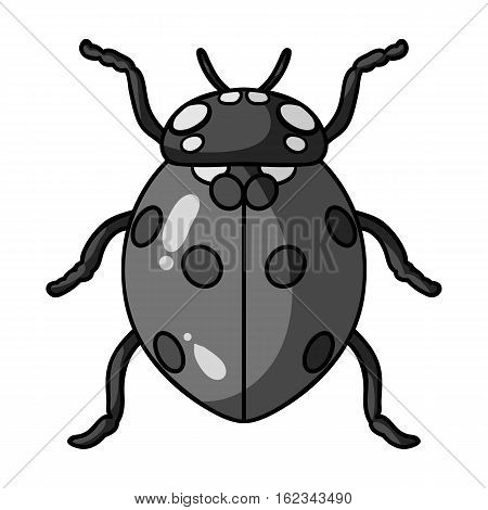 Ladybug icon in monochrome design isolated on white background. Insects symbol stock vector illustration.