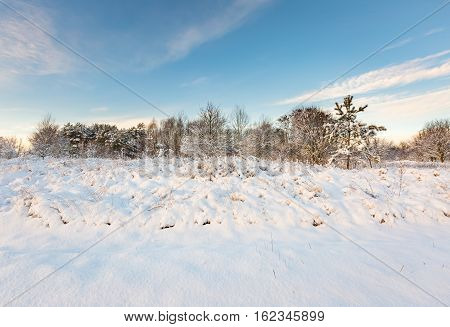Snow Covered Polish Landscape.