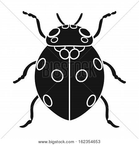Ladybug icon in black design isolated on white background. Insects symbol stock vector illustration.