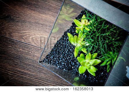 glass vases for flowers; interior decor concept