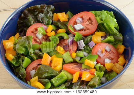Closeup of Salad in blue bowl with red leaf lettuce, sliced tomatoes and chopped green onions, green and orange chopped bell peppers
